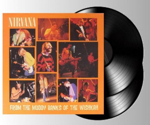 NIRVANA, FROM THE MUDDY BANKS OF.., Vinyl LP